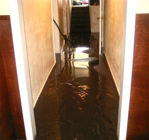 water damage cleanup las vegas