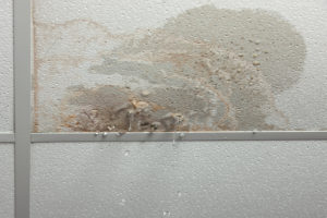 water cleanup henderson, water damage cleanup henderson, water damage restoration henderson